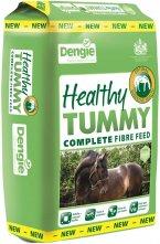 Healthy Tum