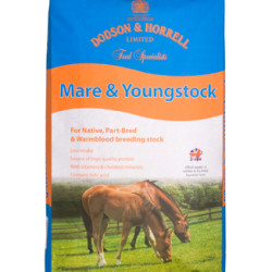 Mare___Youngstock_